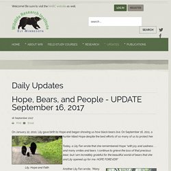 Hope, Bears, and People - UPDATE September 16, 2017 - The Wildlife Research Institute