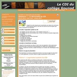 Séquence 1 : La découverte du CDI