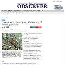 Gene-sequencing study to guide recovery of coastal goshawks - News