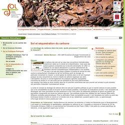 Sol et séquestration du carbone - Sol et Politiques Publiques - Dossiers thématiques : Gessol