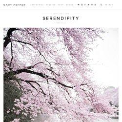 Serendipity « Gary Pepper