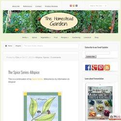The Spice Series: Allspice - The Homestead Garden