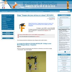 """Stage """"Usages des jeux sérieux en classe"""" 2013-2014"""