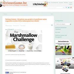 Serious Games : Sécuriser nos projets et améliorer notre capacités à créer de la valeur pour nos clients