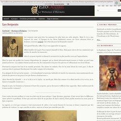 Les Serpents « Mystique & Religions