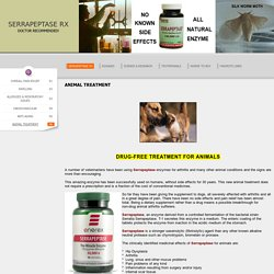 SERRAPEPTASE RX - ANIMAL TREATMENT