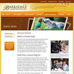 Service Doods - Barksdale Labradoodles