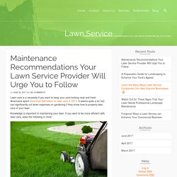 Maintenance Recommendations Your Lawn Service Provider Will Urge You to Follow