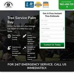 Tree Service Removal Palm Bay & Tree Trimming [Voted #1] □