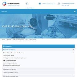 Cell Co-Culture Services - Creative Bioarray