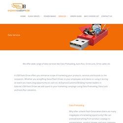 USB Flash Drive Data Services