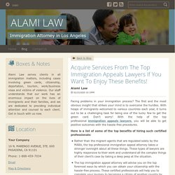Acquire Services From The Top Immigration Appeals Lawyers If You Want To Enjoy These Benefits!