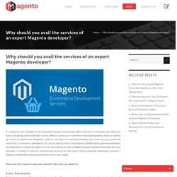Why should you avail the services of an expert Magento developer? -