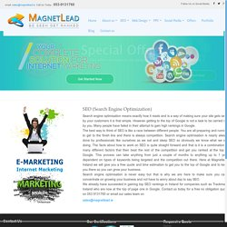 SEO Services by Magnetlead – Digital marketing Company in Dublin, Ireland
