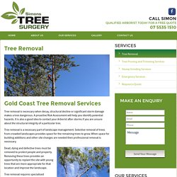 Gold Coast Tree Removal services cover Northern Rivers to South Brisbane