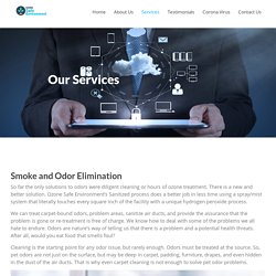 Services-Ozone Safe Enviroment