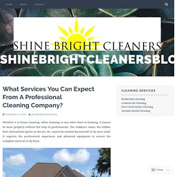 What Services You Can Expect From A Professional Cleaning Company