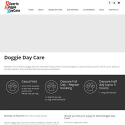 Doggie Day Care Services in Townsville, Queensland