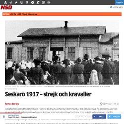 Seskarö 1917 – strejk och kravaller