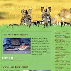 Les zebres surten de cap de setmana : Los porqués del adolescente