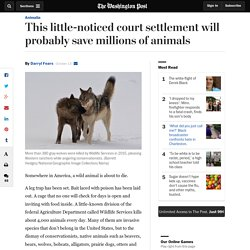 This little-noticed court settlement will probably save millions of animals