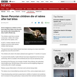 BBC 24/05/12 Peru: seven children die from rabies- vampire bat bites the cause