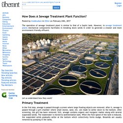 How Does A Sewage Treatment Plant Function?