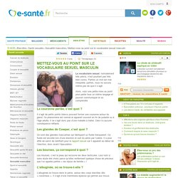 Sexualité : vocabulaire sexuel masculin, test e-sante.fr