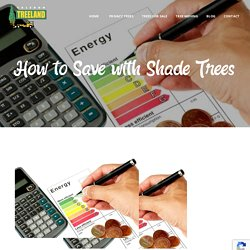 How to Save with Shade Trees