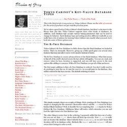 Shades of Gray: Tokyo Cabinet's Key-Value Database Types