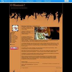 O Shamani ! - Mecanique Hadronique, Ananda Bosman - Blog de voyage