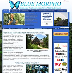Blue Morpho Ayahuasca center