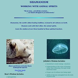 Animal Spirit Guides Shamanism Working With Animal Spirits