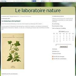 Le shampoing au lierre grimpant - Le laboratoire nature