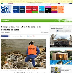 Shanghai annonce la fin de la collecte de cadavres de porcs