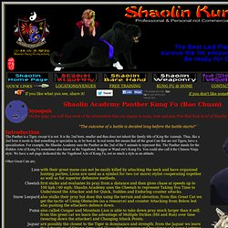 Shaolin Kung Fu - The Panther/Leopard