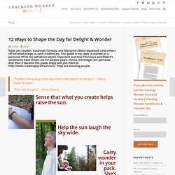 12 Ways to Shape the Day for Delight & WonderA Hut Of Questions