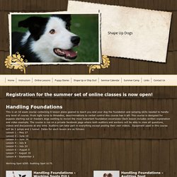 Shape Up Dogs - Online Lessons