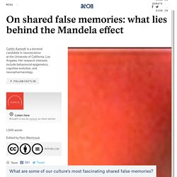 On shared false memories: what lies behind the Mandela effect