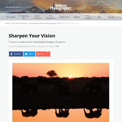Sharpen Your Vision