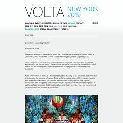 Shay Kun: VOLTA New York