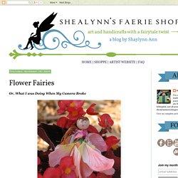Shealynn's Faerie Shoppe: Flower Fairies