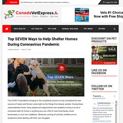 Top SEVEN Ways to Help Shelter Homes During Coronavirus Pandemic