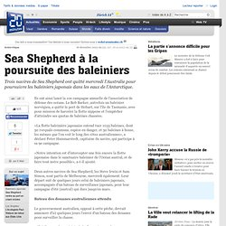 Sea Shepherd à la poursuite des baleiniers