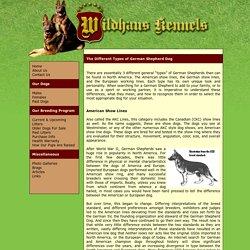(Types of German Shepherds, by Wildhaus Kennels )