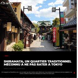 Shibamata, un quartier traditionnel méconnu à ne pas rater à Tokyo - DozoDomo Guide