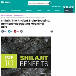 Shilajit Benefits, Shilajit Uses, Shilajit Nutrition, Shilajit Powder
