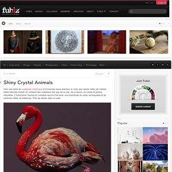 Shiny Crystal Animals