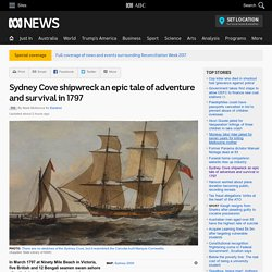 Sydney Cove shipwreck an epic tale of adventure and survival in 1797 - RN