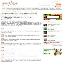 How to Grow Shitake Mushrooms in Florida